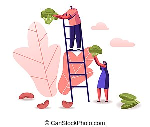 Man Stand on Ladder, Woman Holding Huge Broccoli Piece,...