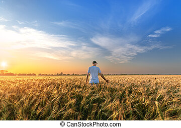 man standing on a field of wheat