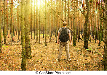 Man stands in the forest