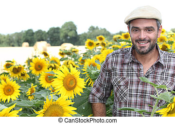 Man stood in field of sunflowers