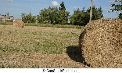 man strike straw bale