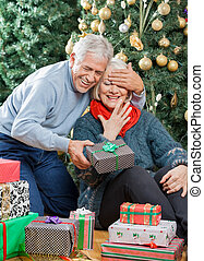 Man Surprising Senior Woman With Christmas Gifts In Store