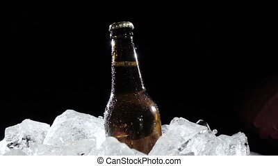 Man takes a bottle of beer from the ice. Black background....
