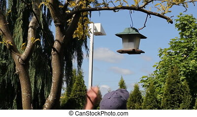 Man Taking Down Bird Feeder - Adult male out in his back...