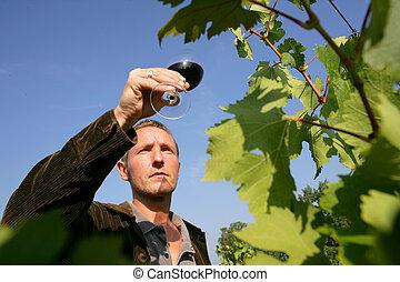 Man tasting a wine