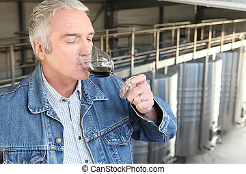 Man tasting industrial wine