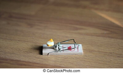 Man Testing A Mouse Trap - A man tests out his new mouse...