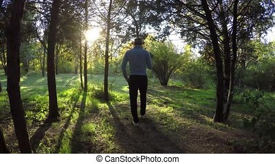 Man tourist walking in the fall forest on sunny autumn day, 4K