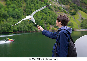 Man traveling on ferry boat and feeding seagull
