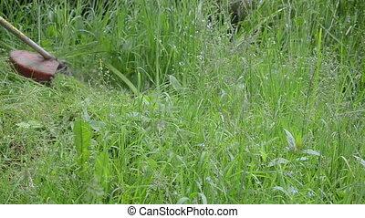 man trimmer cut grass - Closeup of meadow grass move in wind...
