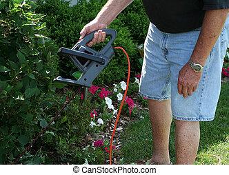 Man trimming bush