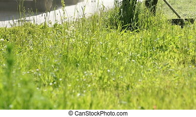 Man trimming grass in a garden using a lawnmower