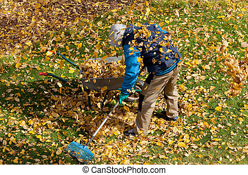 Man trying to clean up the lawn from autumn leaves