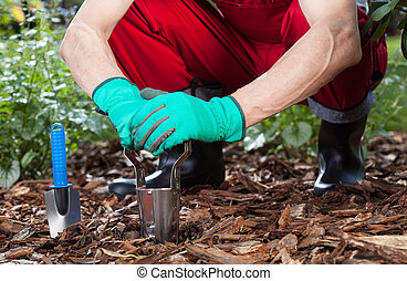 Man uses tools to work in the garden
