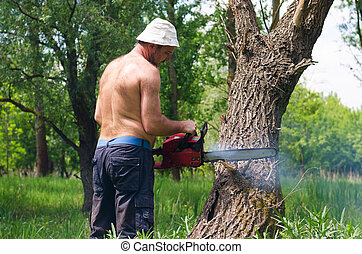 Man using a chainsaw to fell a tree