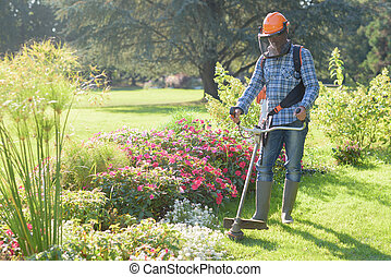 man using a grass trimmer