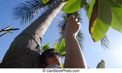 Man using mobile smartphone outdoor lying under palm tree in...