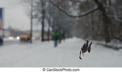 Man walking along snowy winter road