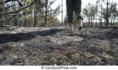 Man walking barefoot by burned grass after big forest wildfire, ecological disaster, nature destruction, concept sorrow