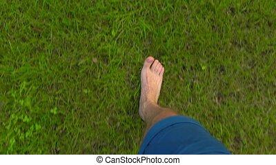 Man walking barefoot on the grass in apple garden, POV. 4K shot