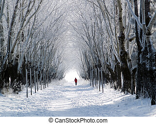 One man in red coat walking snowy forest lane
