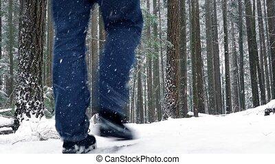 Man Walking In Snowy Forest