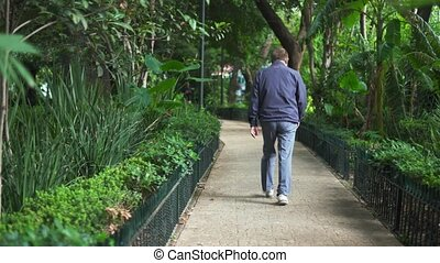 Man Walking on a Path Surrounded by Trees From a Park
