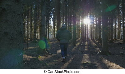 Man walking on a path throug a spruce forest
