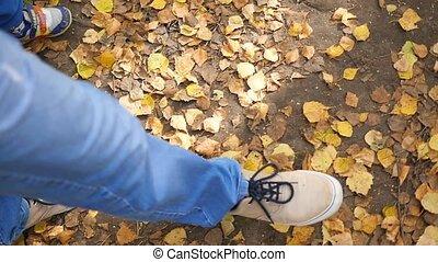 man walking on fallen leaves in autumn