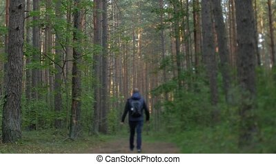 Man walking through a forest.