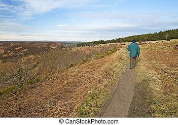 Man walking through the countryside