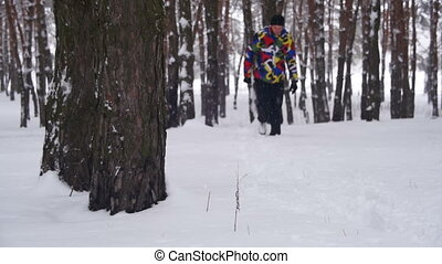Man Walks in the Winter Pine Forest. Slow Motion