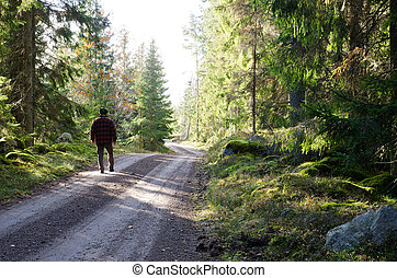 Man walks on a country road in forest