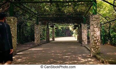 Man Walks Under Huge Canopy In Park