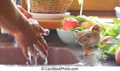 Man washes hands in kitchen sink