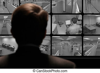 Man watching an employee work via a closed-circuit video...