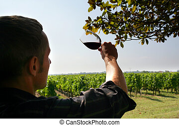 man watching the colour of a red wine of a red wine