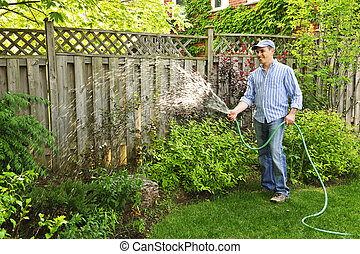 Man watering garden - Man watering the garden with hose in...