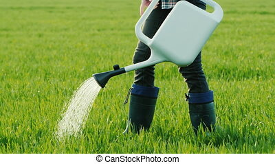 Man watering green grass from a sprinkler.
