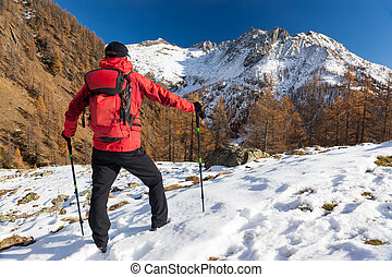 man, winter, backpacking, zelf, wandelende, piemonte, onderneming, avontuur, concepts:, realization., italiaanse , europe., bergen., vakantie, alpen