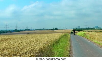 Man with a bicycle in Spike field