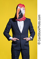 man with a parrot mask on a yellow background
