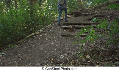Man with backpack goes up ruined staircase in forest