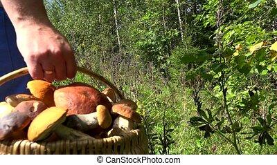 man with basket full of mushrooms walking through forest