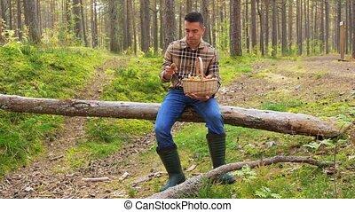 man with basket picking mushrooms in forest - picking season...