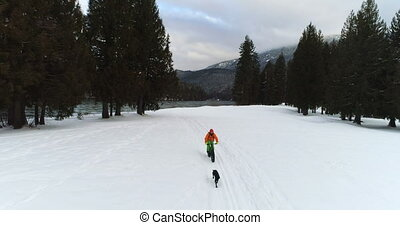 Man with dog cycling on snowy forest 4k - Man with dog...