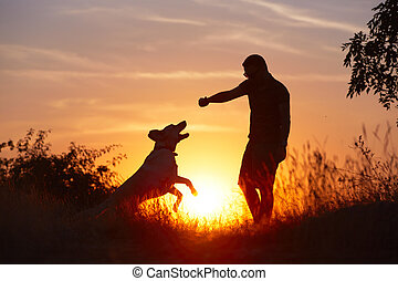 Man with dog - Young man with his yellow labrador retriever ...