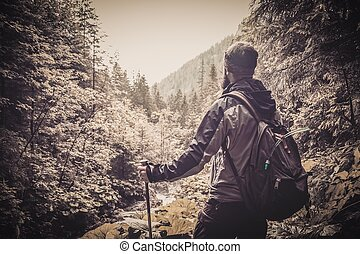 Man with hiking equipment walking in mountain forest
