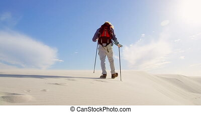 Man with hiking pole walking in the desert 4k - Rear view of...