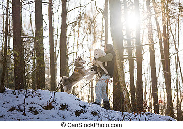 Man with husky dogs